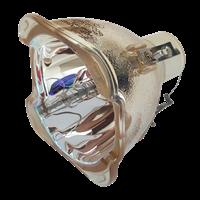 ACER P6200S Lampa bez modułu