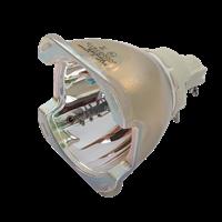 ACER P8800 Lampa bez modułu