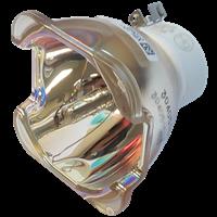 NEC NP24LP (100013352) Lampa bez modułu