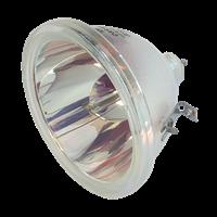 TOSHIBA TLP-711 Lampa bez modułu